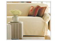 Upholstery Cleaning Buffalo Grove